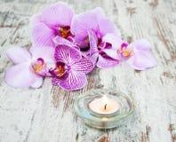 Świeczka z orchideami Fotografia Royalty Free