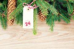 Wiecznozielona drzewa i bożych narodzeń etykietka Obrazy Stock
