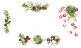 Wiecznozielone gałąź konusują baubles Bożenarodzeniowego tło kwiecisty fra Obrazy Royalty Free