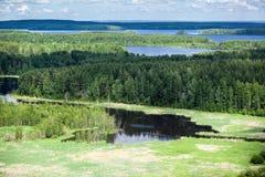 Wiecznozieloni drewna i błękitni jeziora w Karelia, widok z lotu ptaka Obraz Stock