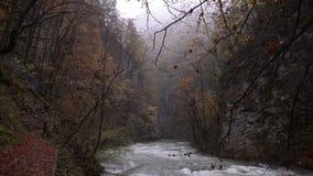wieczorem mgły nad narażenia haze kur długa górska woda river niebo Jar w lesie zbiory wideo