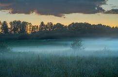 wieczorem mgła Fotografia Stock
