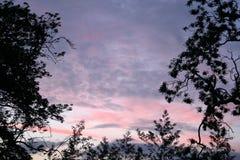 wieczorem oprawione niebo Obrazy Stock