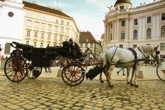 Wiedeń uliczny przyciąganie, końska przejażdżka Obrazy Royalty Free