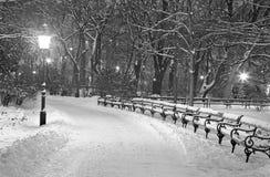 Wiedeń, Stadtpark w zima ranku - Zdjęcia Stock