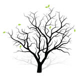 Wieder belebter Baum Lizenzfreies Stockfoto