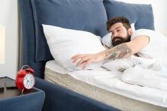 Wieder verschlafen Spitzen für früh aufwachen Gesichtsbett des bärtigen Hippies des Mannes schläfriges mit Wecker Stellen Sie sch stockfotos
