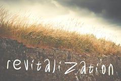 Wiederbelebung geschrieben auf alte Wand der roten Backsteine, grünes Gras und d Lizenzfreie Stockbilder