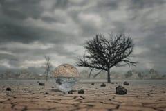Wiedergabe 3d der Glaskugel an der Landschaft des trockenen Bodens mit den Bäumen Stockfotografie