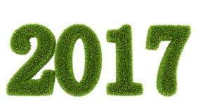 Wiedergabe 3D des grünen Grases des neuen Jahres 2017 stellt dar Stockfoto
