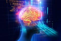 Wiedergabe 3d des menschlichen Gehirns auf Programmiersprachehintergrund Stockfoto