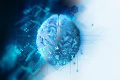 Wiedergabe 3d des menschlichen Gehirns auf Technologiehintergrund Lizenzfreie Stockbilder