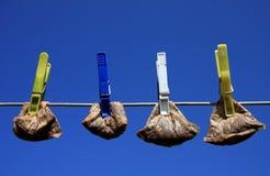 Wiederverwertung der Teebeutel Stockbilder