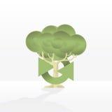 Wiederverwertung des Baums stockbild