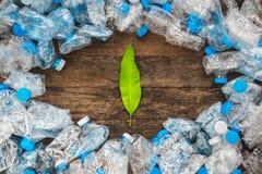 Wiederverwertung des Konzeptes Grün verlässt auf einem hölzernen Hintergrund um die transparenten Plastikflaschen Das Problem der Stockbild
