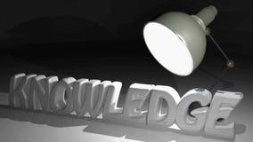 WIEDZA 3D pisze dorośnięciu w stałych białych listach pod światłem biurko lampa - 3D renderingu wideo zbiory