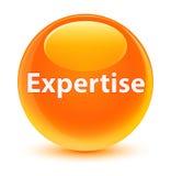 Wiedza specjalistyczna szklisty pomarańczowy round guzik Obrazy Stock