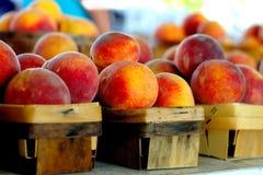 świeże brzoskwinie Fotografia Stock