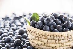 Świeże czarne jagody na pucharze Zdjęcia Royalty Free