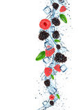 Świeże jagody z wodnym pluśnięciem Obraz Royalty Free