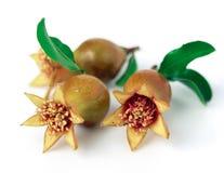 świeże owoce Obrazy Stock