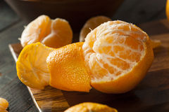 Świeże Surowe Organicznie mandaryn pomarańcze Zdjęcie Royalty Free