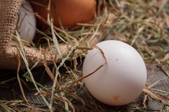 Wiejscy jajka w jutowej torbie Zdjęcia Royalty Free