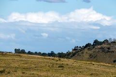 Wiejscy jesieni zimy Chmurnego nieba wzgórza i dolina krajobraz Obraz Royalty Free