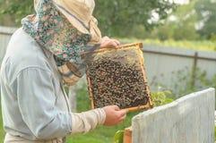 Wiejscy przychody w postaci beekeeping obraz stock