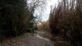 Wiejska ścieżka przez wsi fotografia royalty free