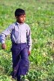 WIEJSKA chłopiec praca dzieci - wioski życie INDIA - obrazy stock