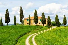 Wiejska domu i cyprysu aleja Fotografia Royalty Free