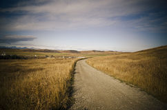 Wiejska droga Obrazy Stock