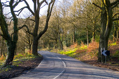 Wiejska droga. Zdjęcie Royalty Free