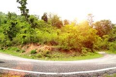 Wiejska droga bierze krzywę w lesie Obraz Stock