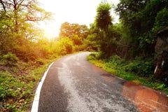 Wiejska droga bierze krzywę w lesie Zdjęcie Royalty Free