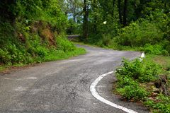 Wiejska droga bierze krzywę w lesie Obrazy Royalty Free