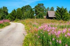 wiejska droga Estonia, UE Obraz Stock