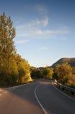 Wiejska droga i drzewa w słonecznego dnia zmierzchu Fotografia Royalty Free