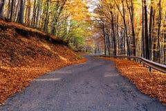 wiejska droga jesieni Zdjęcie Stock