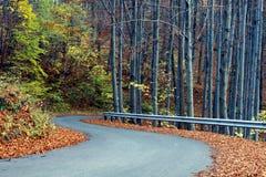 wiejska droga jesieni Fotografia Stock