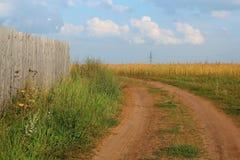 Wiejska droga. Lato krajobraz. Zdjęcie Royalty Free