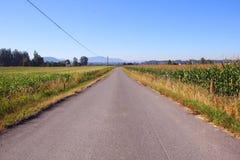 wiejska droga mała Obraz Stock