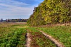 Wiejska droga na łące blisko lasu w jesieni Obrazy Stock