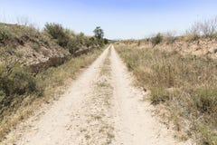 Wiejska droga na letnim dniu Obraz Royalty Free