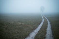Wiejska droga na mgłowym ranku zdjęcie stock