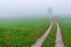 Wiejska droga na mgłowym ranku obraz stock