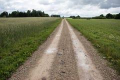 wiejska droga Wiejska droga przez rolniczych poly podczas dnia Fotografia Royalty Free