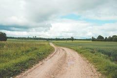 wiejska droga Wiejska droga przez rolniczych poly podczas dnia Obraz Stock