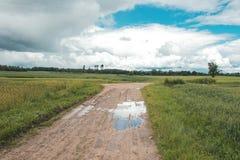 wiejska droga Wiejska droga przez rolniczych poly podczas dnia Zdjęcie Royalty Free